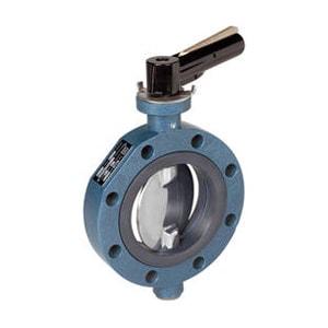 ebro-valve